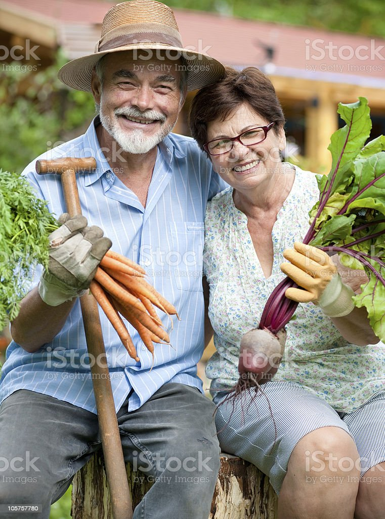 Older couple proudly showing vegetables from their garden royalty-free stock photo