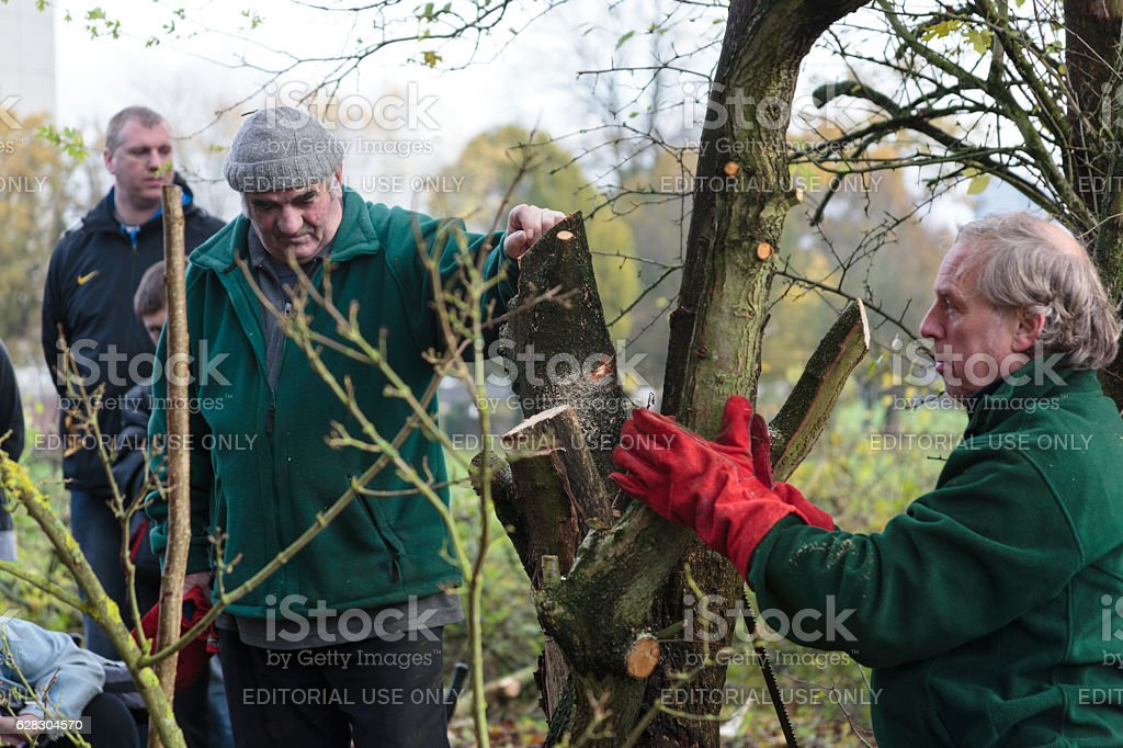 Older man teaching traditional craft in wooded area stock photo