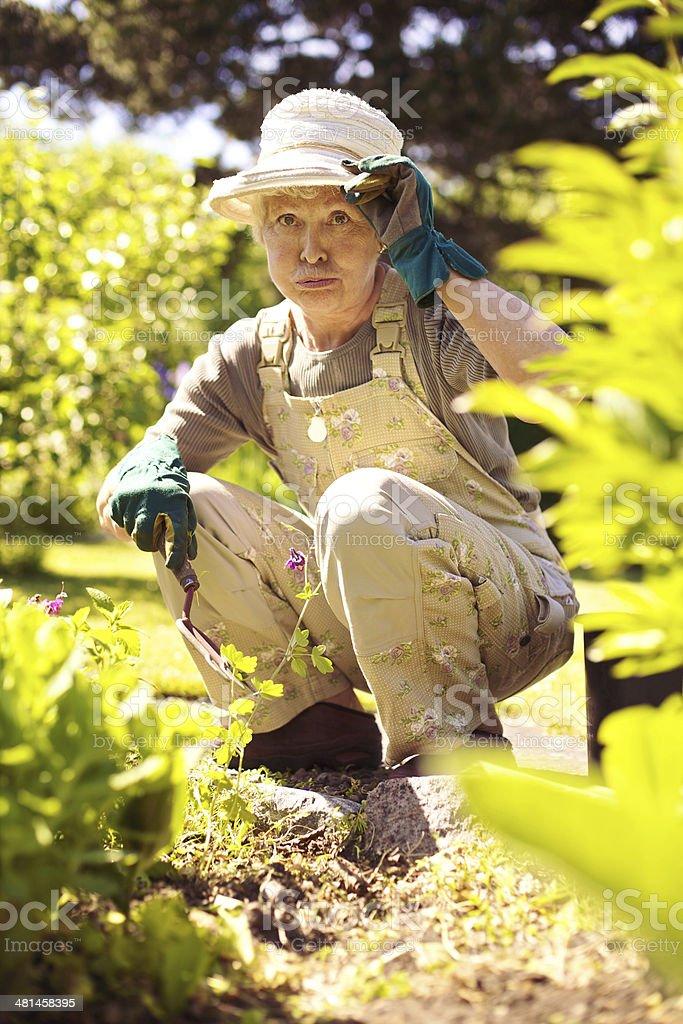 Older woman working in garden feeling tired stock photo