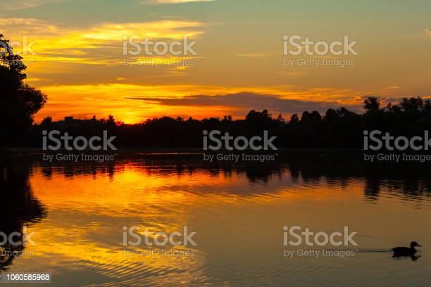 Photo of Olgin pond in Petergof, Saint Petersburg, Russia.