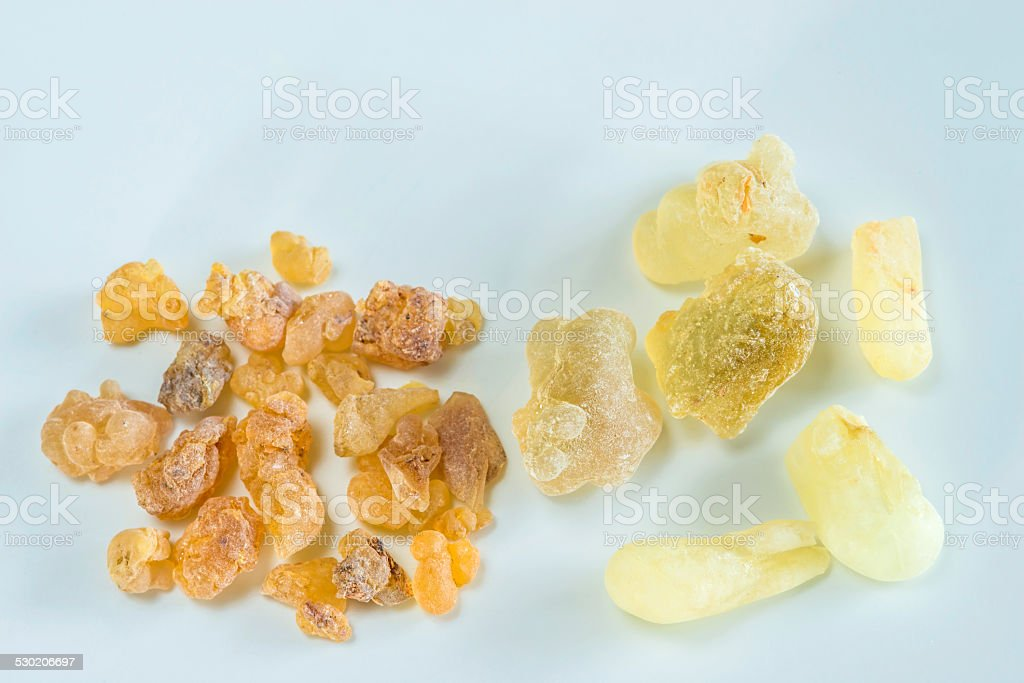 Olibanum, Boswellia serrata stock photo