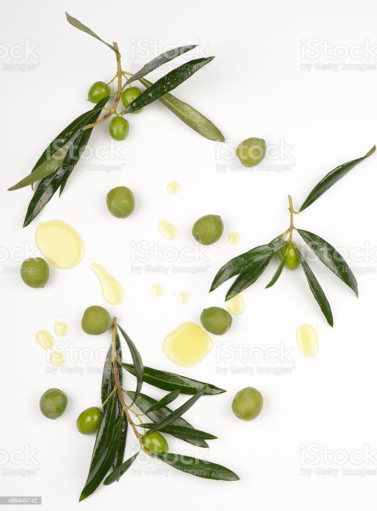 Fundo de oliva - foto de acervo