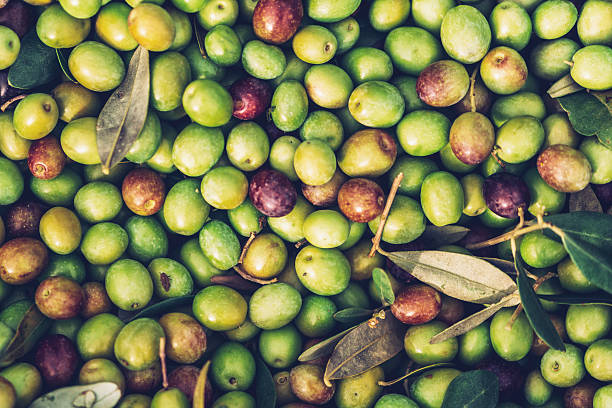 Olive fruit Olive fruit. olives stock pictures, royalty-free photos & images