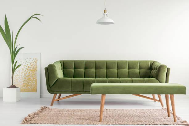 olivgrün, stilvolle sofa und eine polsterbank in einem hellen wohnzimmer interieur mit weißen wänden und einer pflanze. echtes foto. - oliven wohnzimmer stock-fotos und bilder