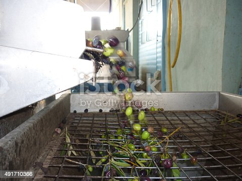 184640907istockphoto Olive mill in action 491710366