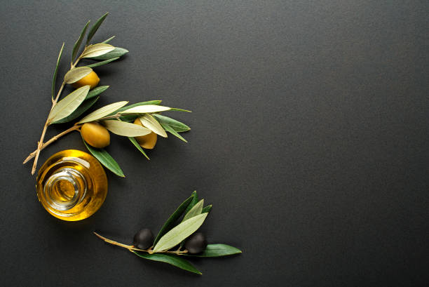Olive oil and olive branch stock photo