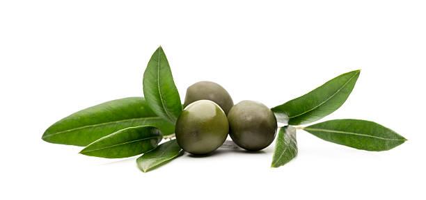 olio di oliva e olive con foglie su sfondo bianco - ramoscello d'ulivo foto e immagini stock
