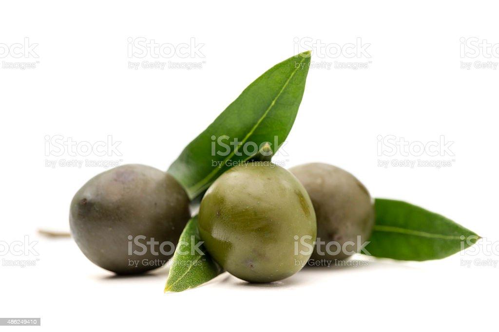 Azeite de oliva, azeitonas com folhas no fundo branco - foto de acervo