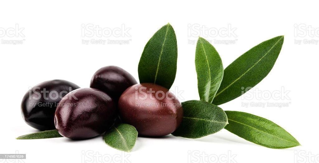 olive foto