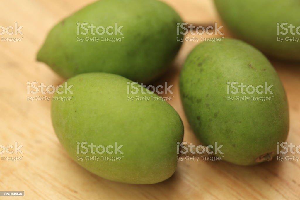olive stock photo