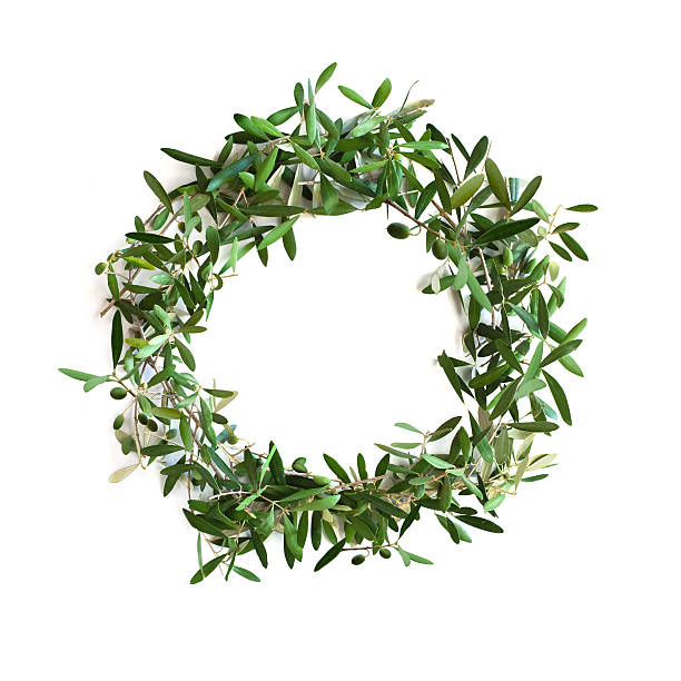 Olive tree branch wreath stock photo