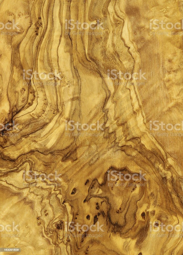 olive tree wood texture stock photo