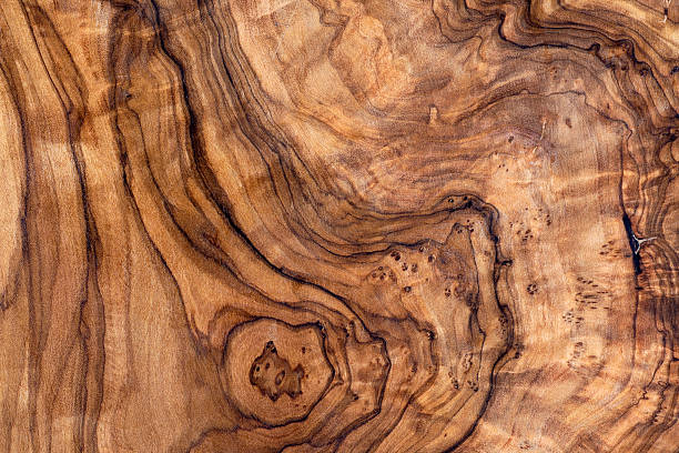 Olive Wood Grain Pattern Background stock photo
