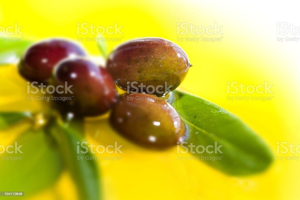 Olives and oil royalty-free stock photo