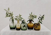 Olives branches with fresh leaves in vases on table