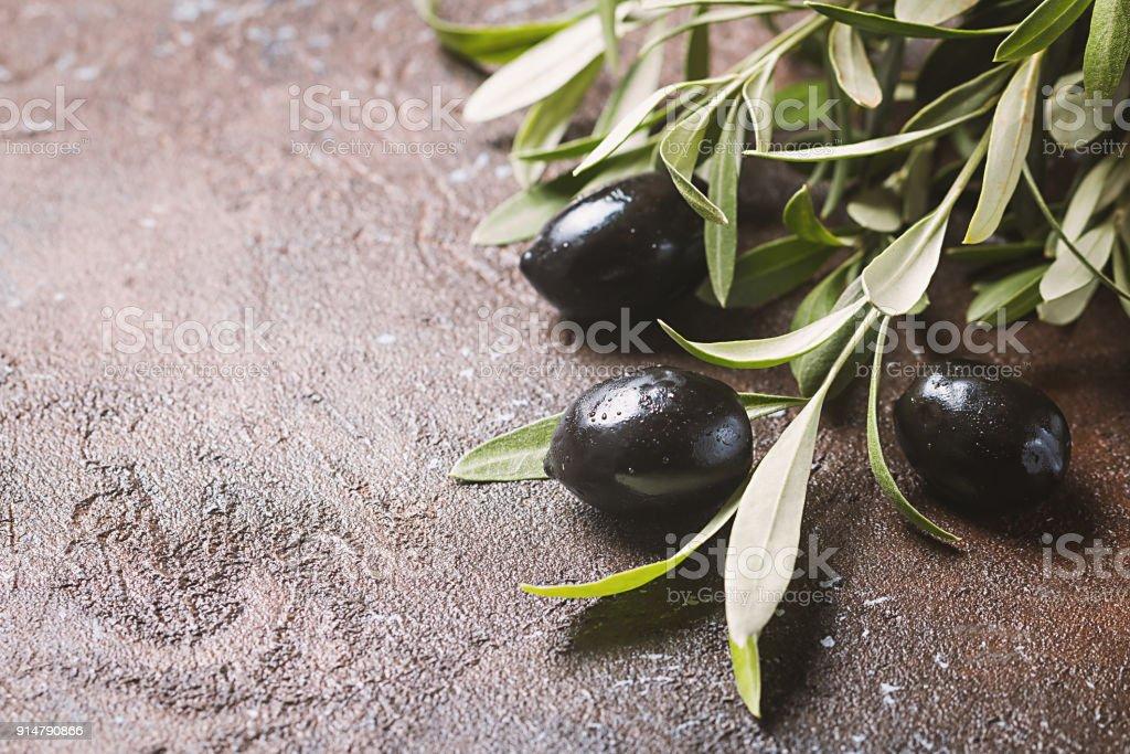 Rama con aceitunas de hojas - foto de stock