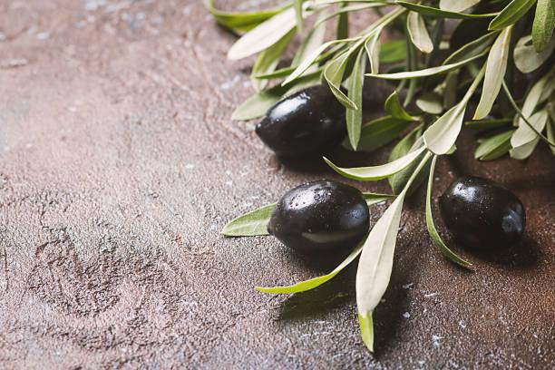 oliven auf ast mit blättern - kochkunst stock-fotos und bilder