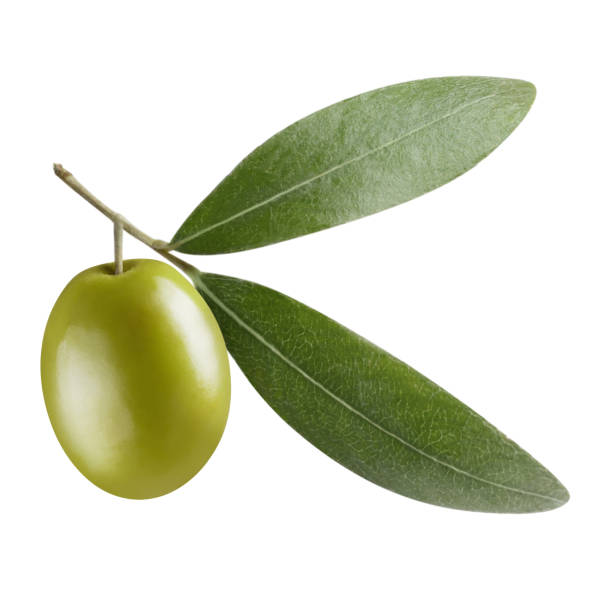 Olives on white Single green olive with leaves, isolated on white background olive fruit stock pictures, royalty-free photos & images