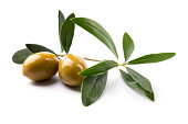 green olives on branch with leaves; isolated on white