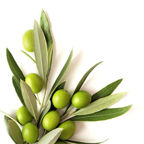 olives – Foto