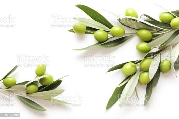 Olives picture id970162952?b=1&k=6&m=970162952&s=612x612&h=ndfgfdcbkrkwxrfmfdyijz7u ozvi7puktd9asq5foa=