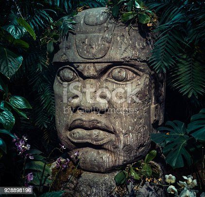 Olmec sculpture carved from stone. Big stone head statue in a jungle.