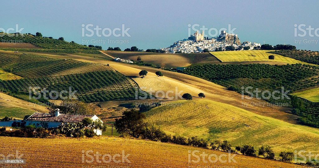 Olvera above hills, landscape with cornfields, olive groves, Andalusia, Spain stock photo