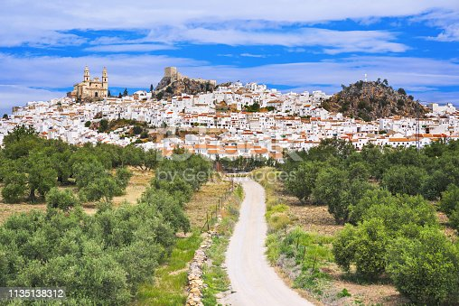 istock Olvera village with olive trees, Andalusia, Spain 1135138312