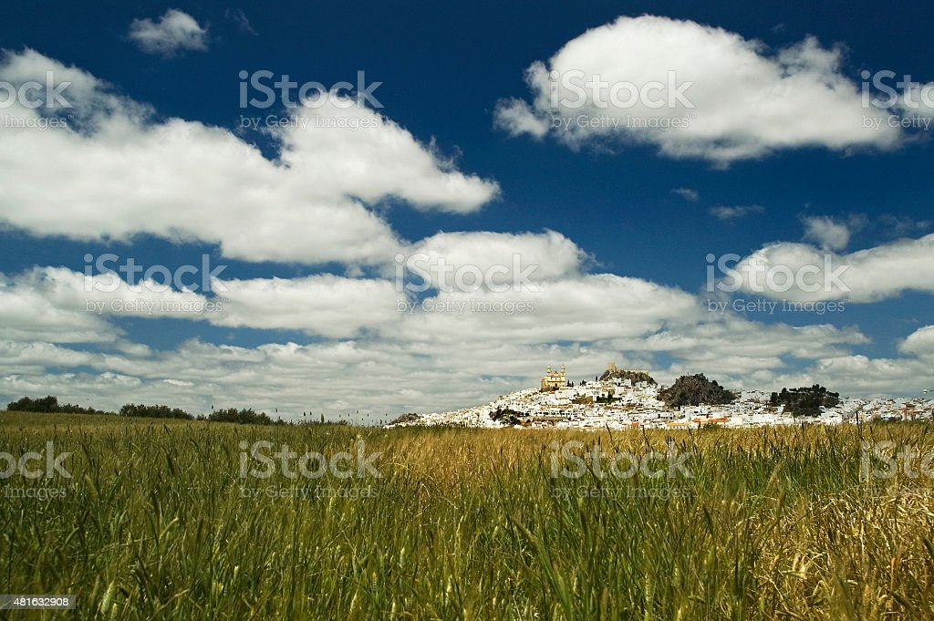 Olvera white town, landscape with clouds, cornfields, church, Andalusia, Spain stock photo