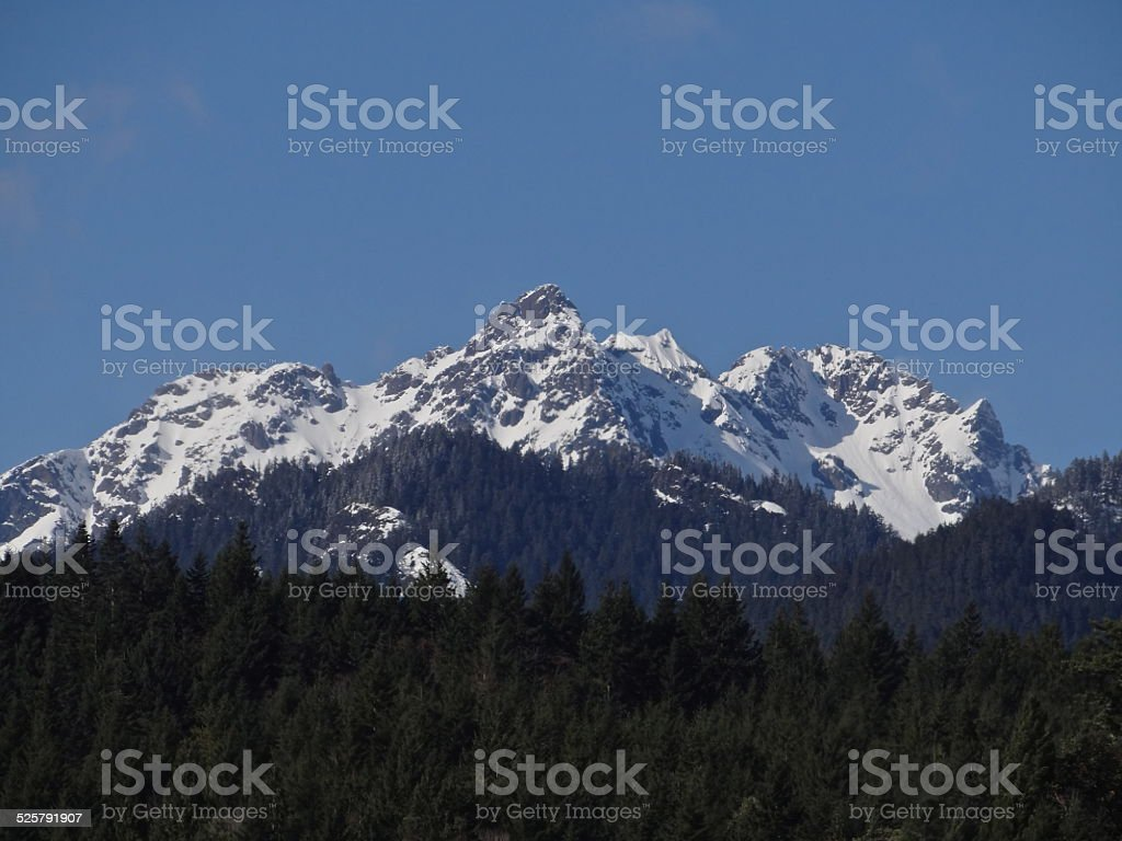 Olympic Brothers Wilderness stock photo