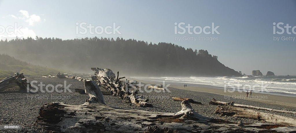 Olympic Coast Panorama royalty-free stock photo
