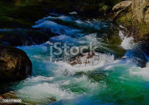 Northwest Washington's Olympic Peninsula. Olympic National Park/NW Zone. Sol Duc River Salmon Cascades.