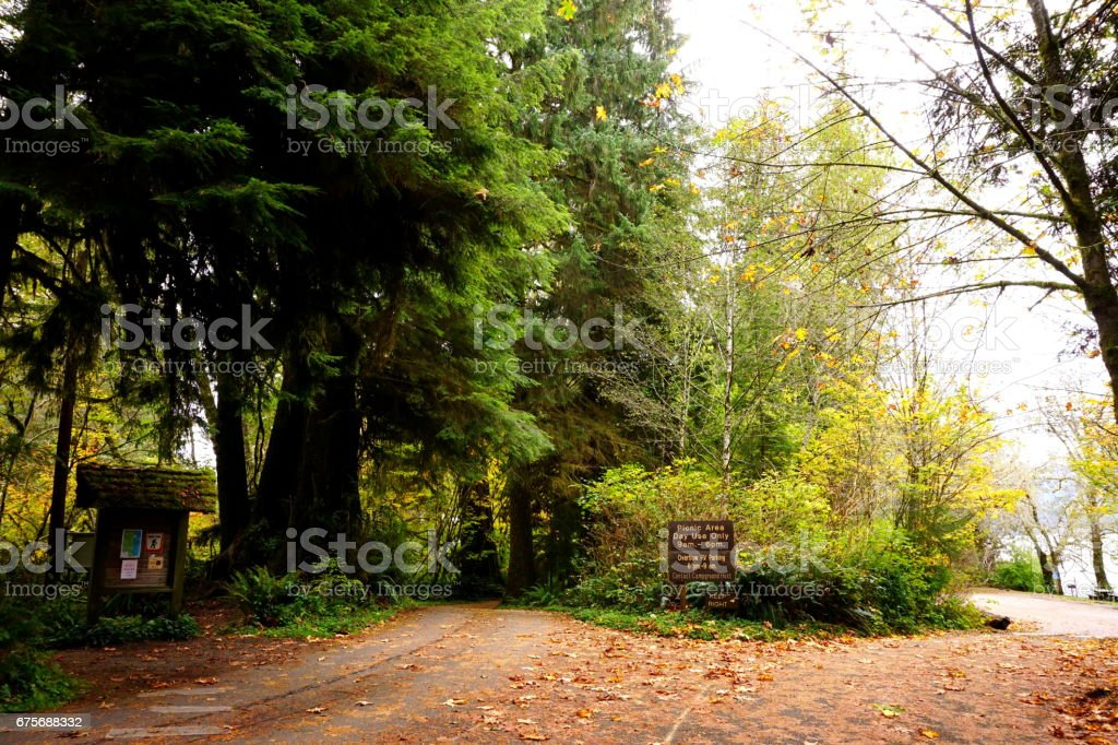 Olympic mountain National Park. royalty-free stock photo