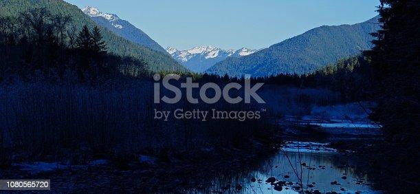 Northwest Washington's Olympic Peninsula. Olympic National Park/SW Zone. Quinault River Valley.