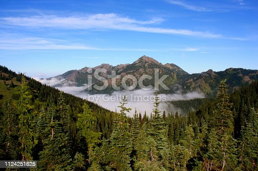 Summer in Olympic National Park in Washington
