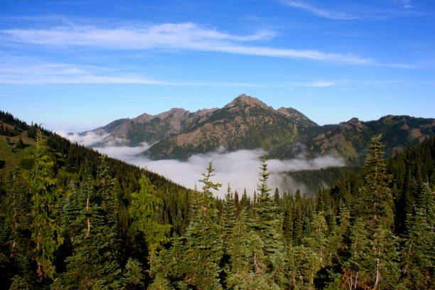 Olympic Nationalpark – Foto