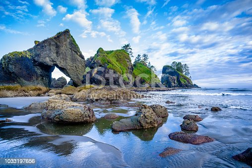 Rugged Beach with rock formations and abundant sea life