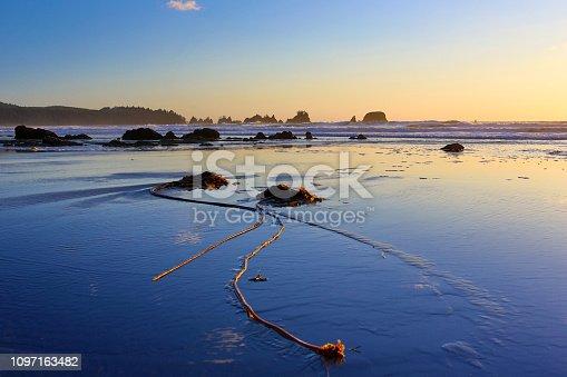istock Olympic National Park, Washington 1097163482