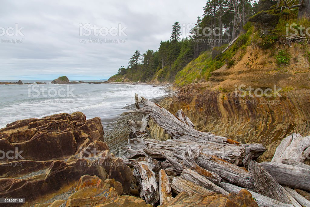 Olympic Peninsula Coast stock photo