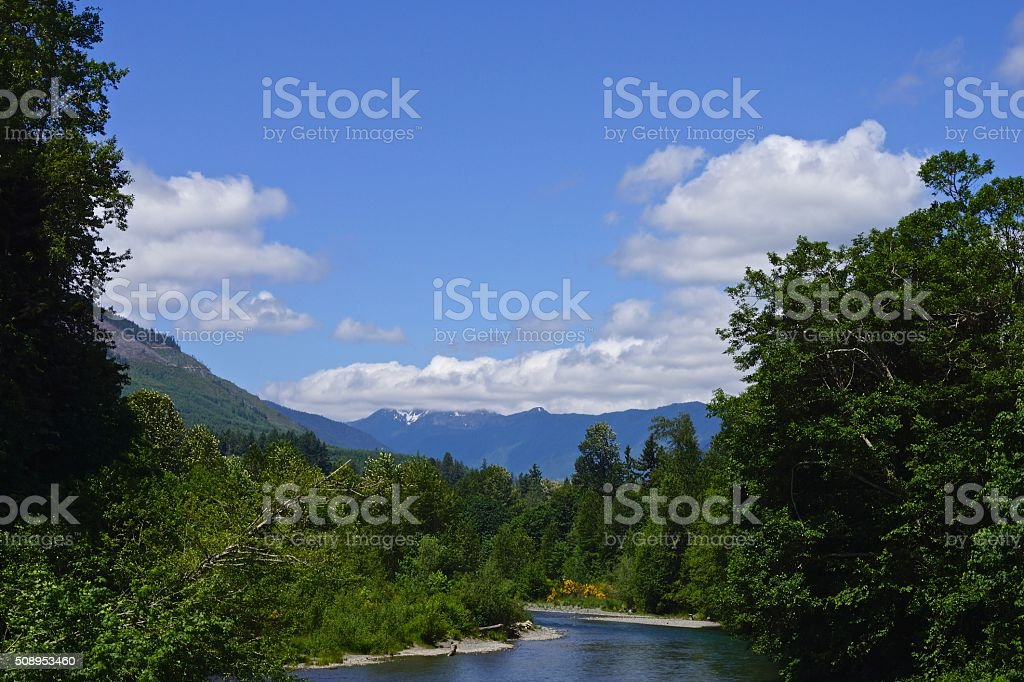 Olympic River Valley stock photo