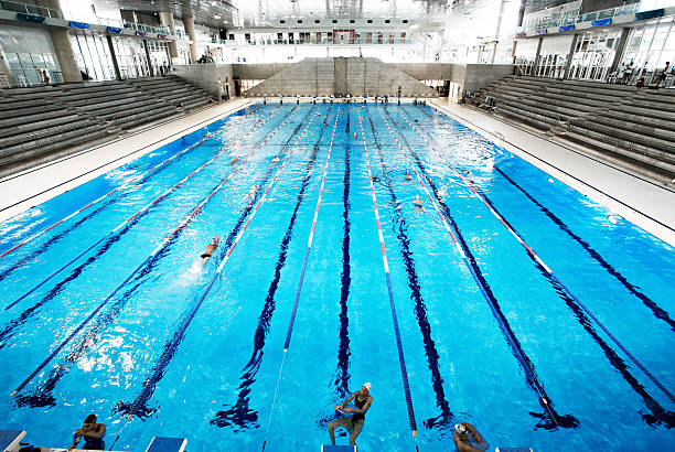Olympic Swimming Pool Stock Photo Piscine Olympique