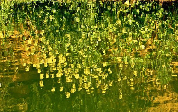 omaggio ein monet - monet bilder stock-fotos und bilder