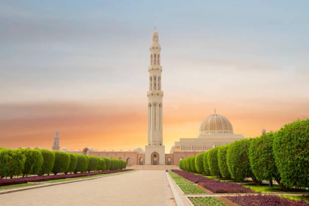 oman. muscat. der sultan qaboos moschee. - maskat stock-fotos und bilder