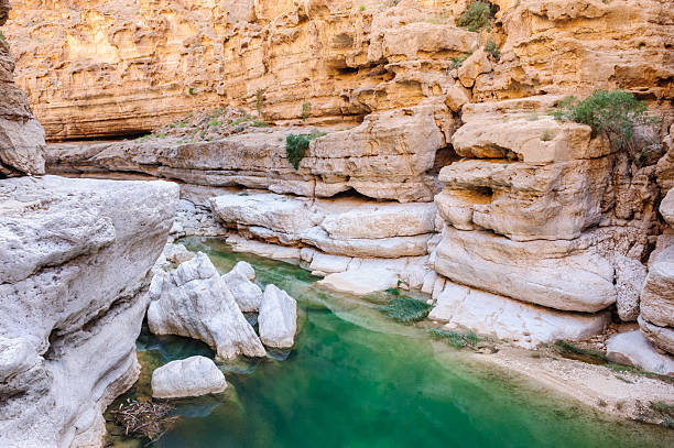Oman wadi Wadi Al Shab, Oman. riverbed stock pictures, royalty-free photos & images