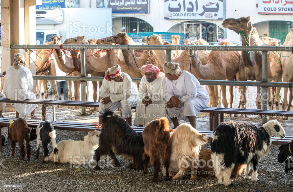 omani man at a camel market in Sinaw stock photo
