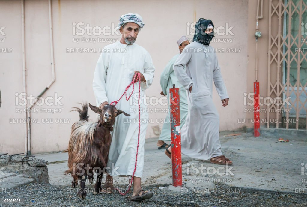 omani man, dressed in traditional clothing, taking a goat to Friday goat market at Nizwa old town stock photo