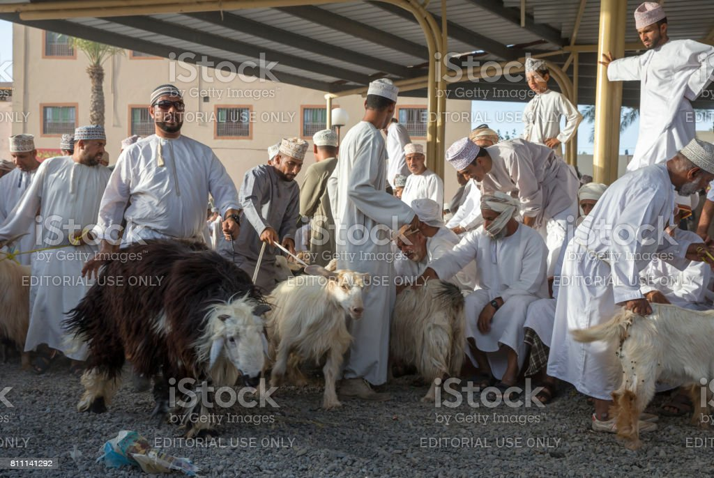 omani man walking with a goat in order to see it at Nizwa goat market stock photo