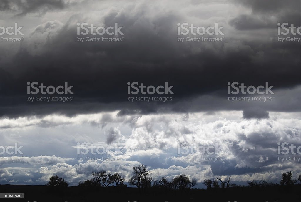 Ominous Dark Clouds over Winter Trees royalty-free stock photo