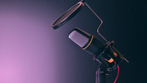 omnidirectional condenser microphone for interview recording / video conferencing / podcast / voice diction / phone - diction stock pictures, royalty-free photos & images