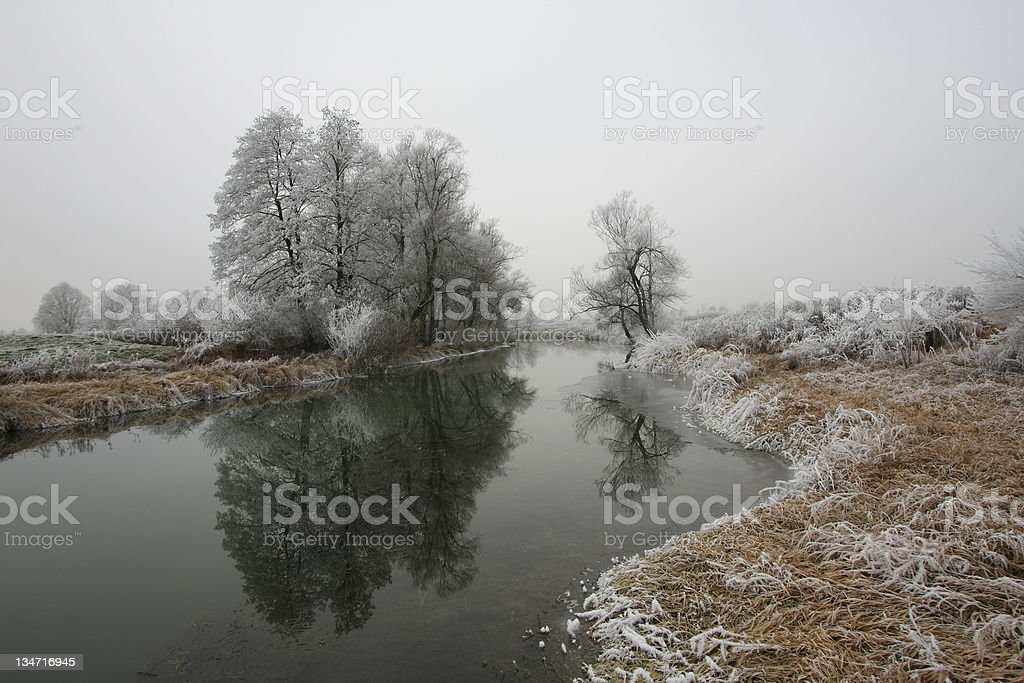 On a cold morning stock photo